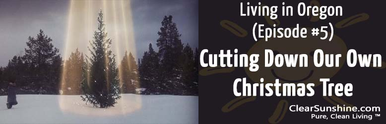 Living in Oregon (Episode #5) – Cutting Down Our Own Christmas Tree